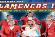 VIENEN LOS FLAMENCOS JR DESDE BOLIVIA