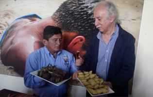 Día Nacional y Festival de la Pachamanca en Huachipa