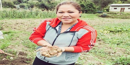 Sonia Morales se reiventa en la chacra, siembra papas, ollucos y alverjas
